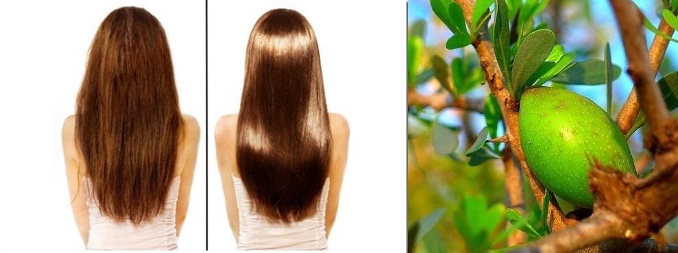 aciete-argan-pelo-cabello